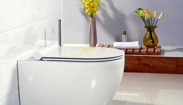 Как подобрать крышку-сиденье для унитаза